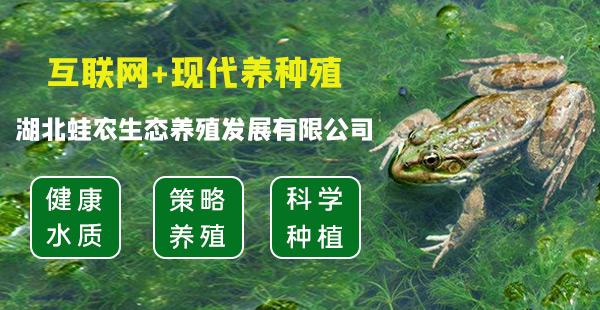 湖北蛙農生態養殖發展有限公司