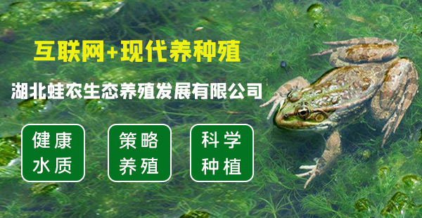 湖北蛙农生态养殖发展有限公司